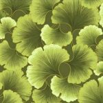 Gingko Tonals Celery