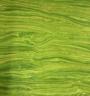 Artisan Spirit Lime Green Sandscape 20474 71