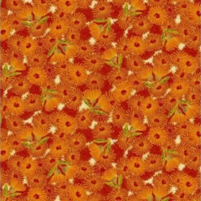 Flowering gum 12 8 orange multi