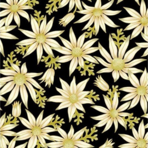 Flannel flowers on black 15 16