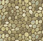 Stonehenge Woodland 39030-68
