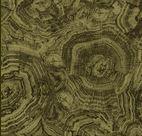 Stonehenge Woodland 39050-74