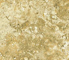 Stonehenge Woodland 39060-53