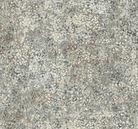Stonehenge Woodland 39060-91