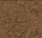 Stonehenge Aphrodite 2981-37