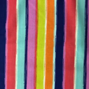 Multi-colour Stripe